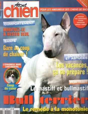 ATOUT-CHIEN-JUIN-2008-chiot-bullterrier