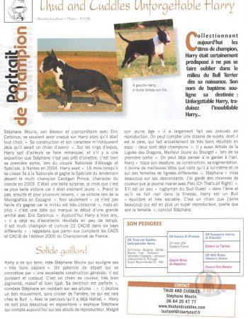 bull-terrier-TC-UNFORGETTABLE-HARRY-2006